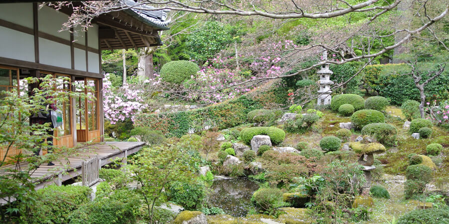 Why I Love Japan: Temples and Shrines