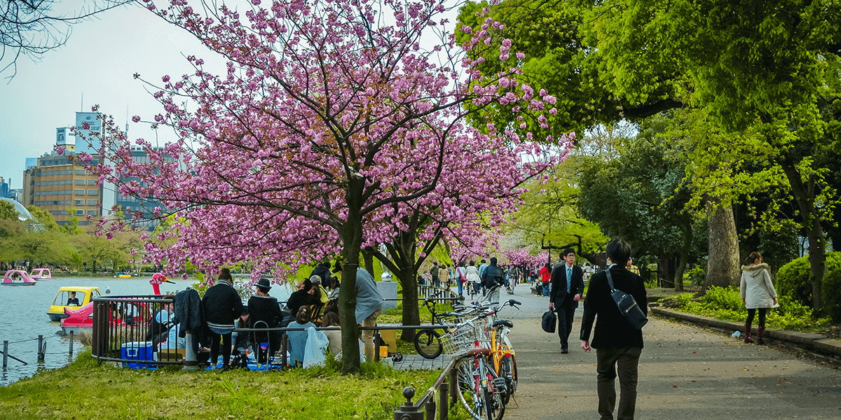 Top Things to Do in Tokyo: Ueno Park