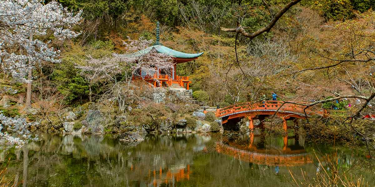 Top 25 Things to do in Kyoto: Daigoji Temple